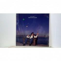 Vinile 33    Jeff Lynne...