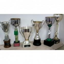 Coppa/trofeo   Piccolo    V