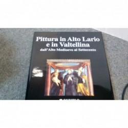 Libro Pittura In Alto Lario...